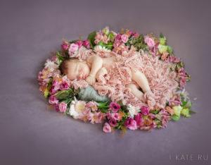 фотосессия новорожденных, фотограф Шипилова Екатерина