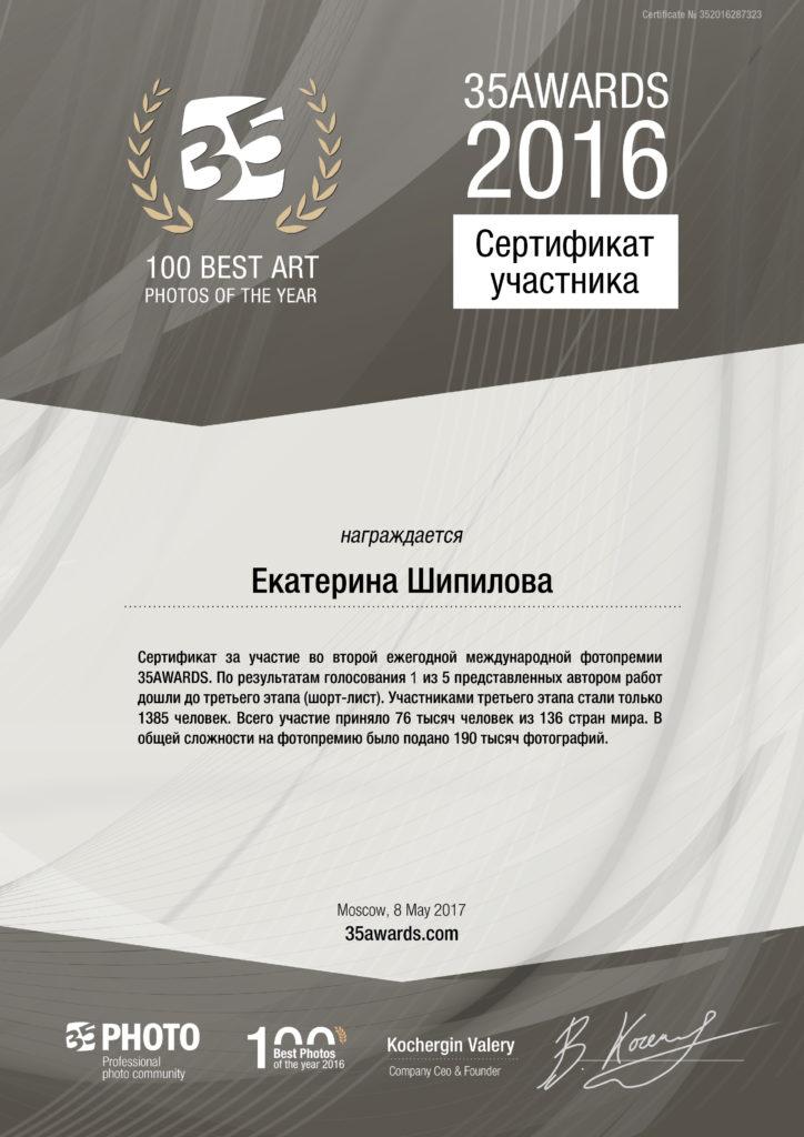 35AWARDS.com сертификат участника